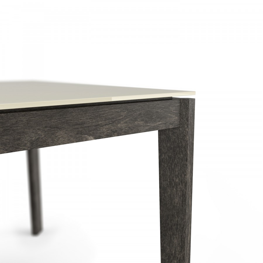 60'' Rectangular Table